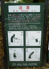 Beware of the Deer!!