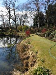 Sunny Gardens