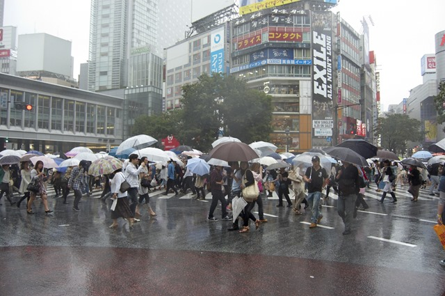 Shibuya Crossing - scary stuff!