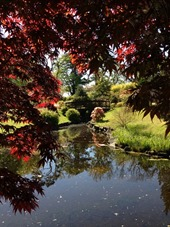 Kyoto Friendship Garden
