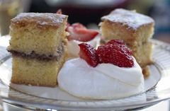 Victoria Sponge and Meringue Nest