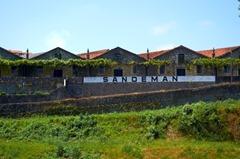 Sandemans Port Lodge