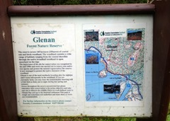 Glenan Forest Nature Reserve Walk