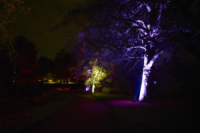 Royal Botanic Garden Edinburgh - A Night in the Garden