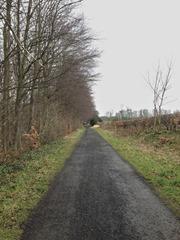 The last stretch to Cramond Brig