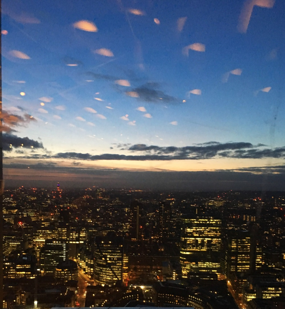 Duck and Waffle View