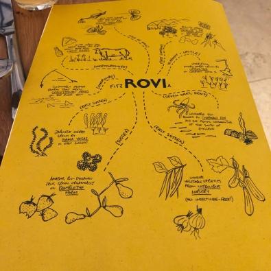 ROVI (21)